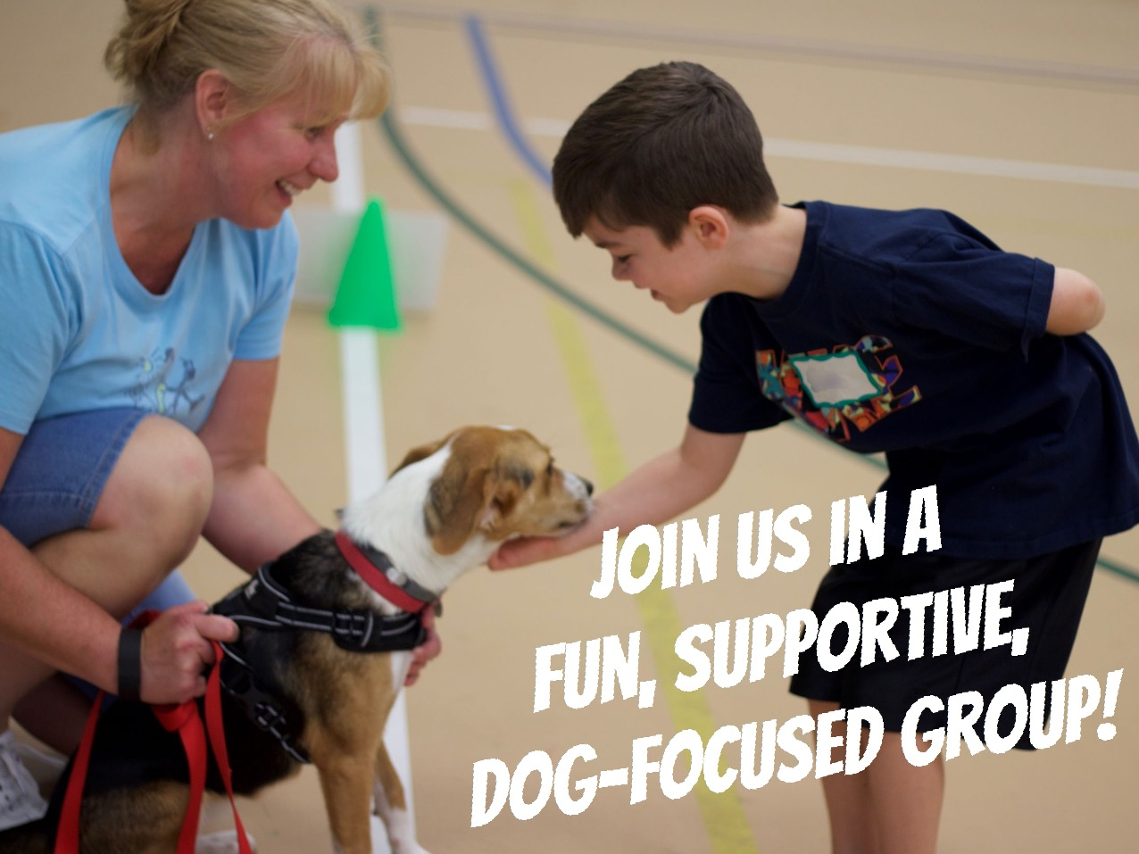 Join us in a fun, dog-focused group!