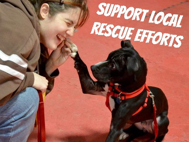 Support Local Rescue Efforts