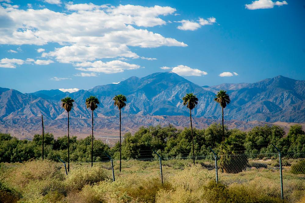 2017-09-27 Palm Springs RAW-8