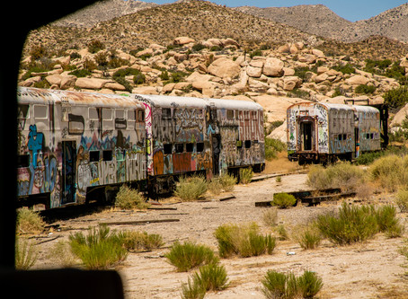 Saving Lives at the Abandoned Trains in San Diego