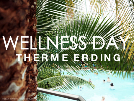 WELLNESS DAY - THERME ERDING