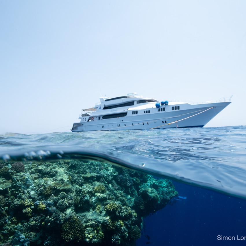 Red Sea 2019 Simon Lorenz-1105