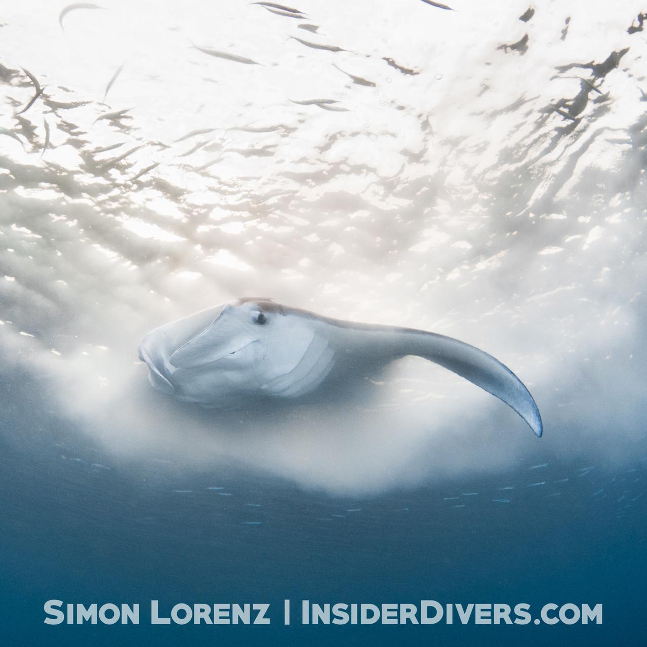 Guam 2018-04 Simon Lorenz-0804