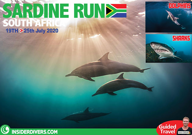 2020-04 South Africa new.jpg