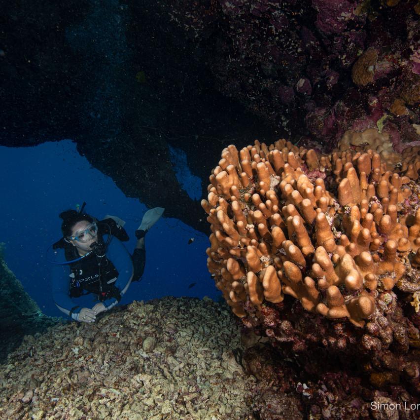 Red Sea 2019 Simon Lorenz-0984