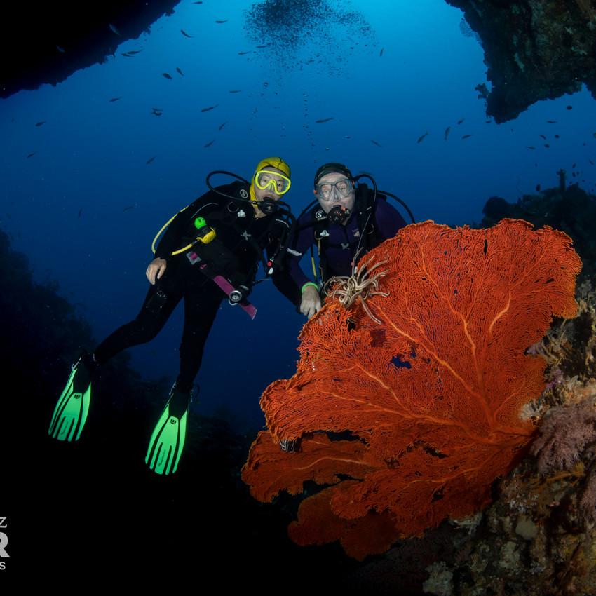 Palau 2019-04 Simon Lorenz-7250
