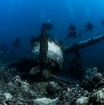 Palau 2017-4 simon lorenz-3228.jpg