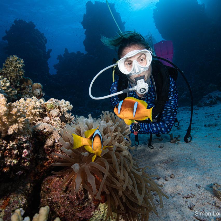 Red Sea 2019 Simon Lorenz-1177