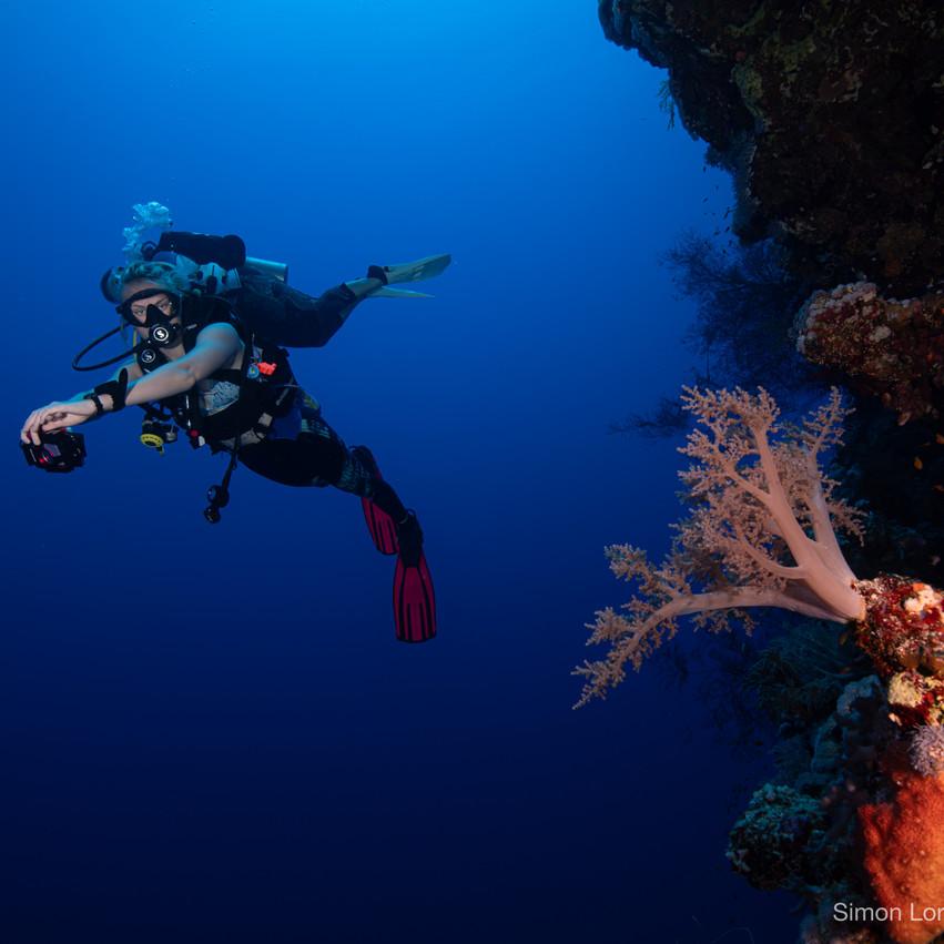 Red Sea 2019 Simon Lorenz-0873