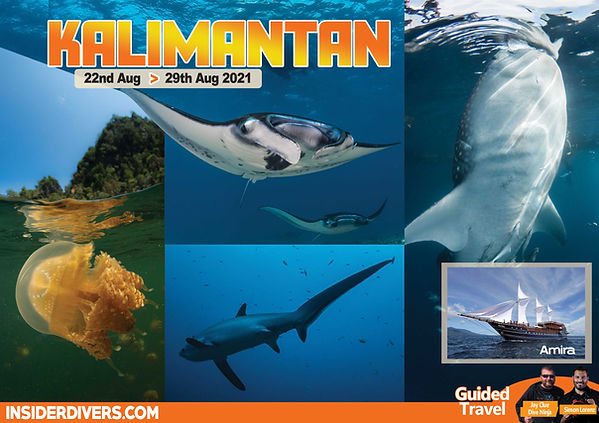 2021-08 Kalimantan.jpg