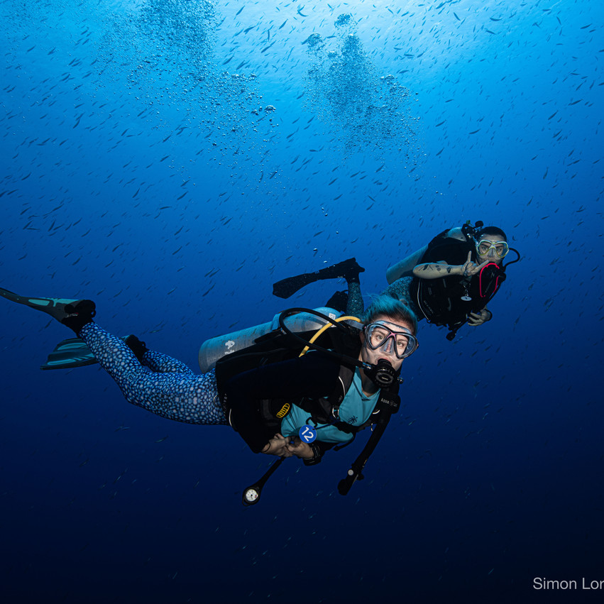 Red Sea 2019 Simon Lorenz-2821