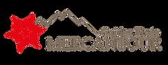 Logo-02vide.png