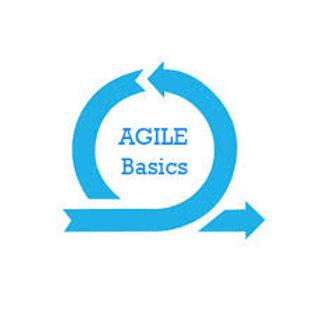 Learn Agile & Apply the Basics