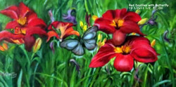 Red Daylilies with Butterfly