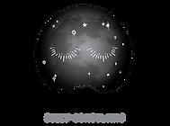 ETSA_RGB_transparent_Logo_Grayscale.png