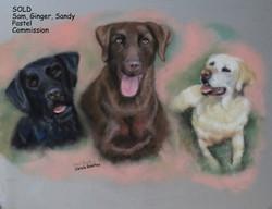 Sam, Ginger, Sandy