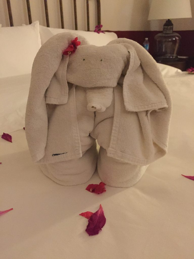 Towel Art Elephant