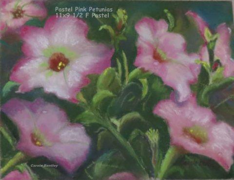 Pastel Pink Petunias