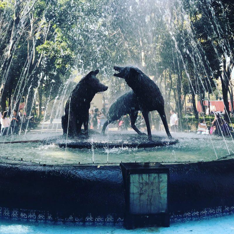 Fountain in Coyoacán