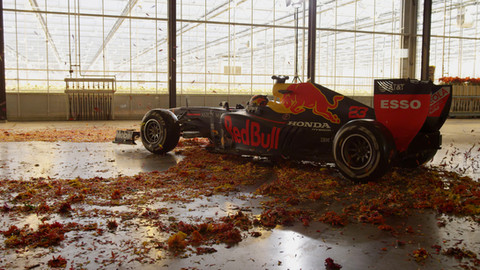 Redbull F1