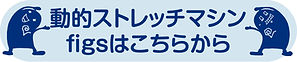 FIGS_ボタン.jpg