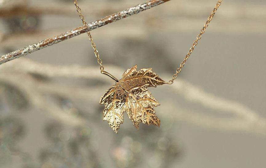 Leaf Special32.jpg