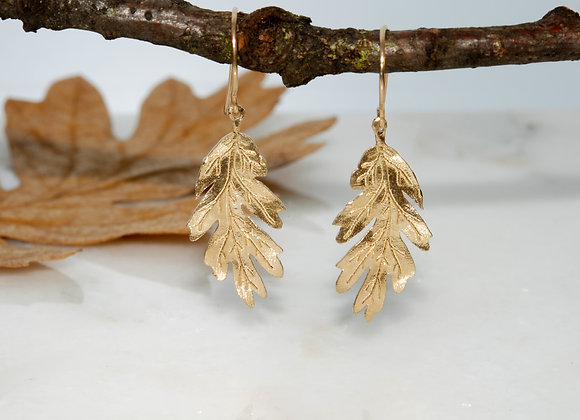 Oak Leaf Dangle Earrings