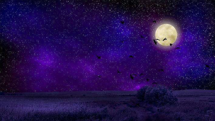 moon-2372573_1920.jpg