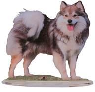 chien dernier jpg.jpg