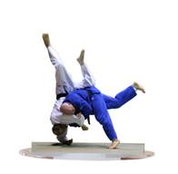 photo sculture sport judo.jpg