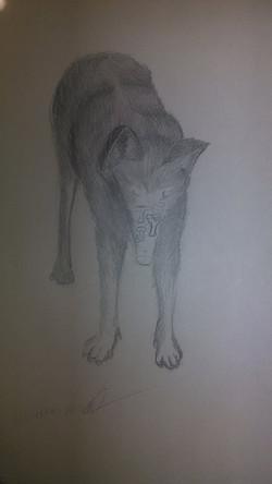 original wolfram by our Head Artist