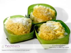 Sweet Sticky Rice with Egg Custard