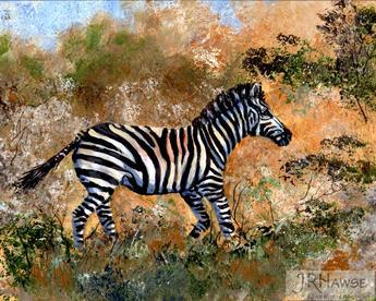 Zebra-Taking Cover