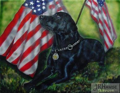 Quincy - Bomb Dog