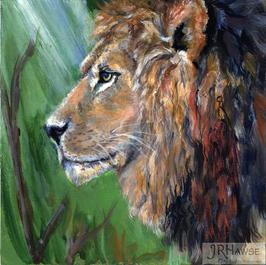 Lion Fancy
