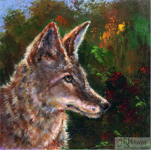 Coyote Trickster
