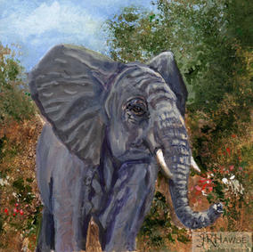 Elephant-Got Tusks