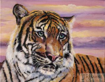 Sunset Tiger