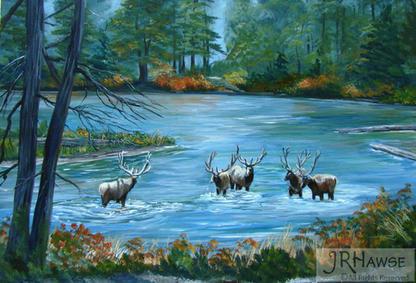 River Challenge