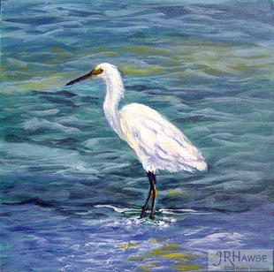 Sarasota Heron