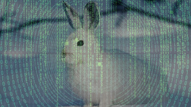 Reappraising the Matrix