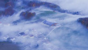 Through the Mist