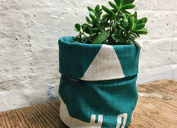 Bright Teal 'Honister' Plant Cover