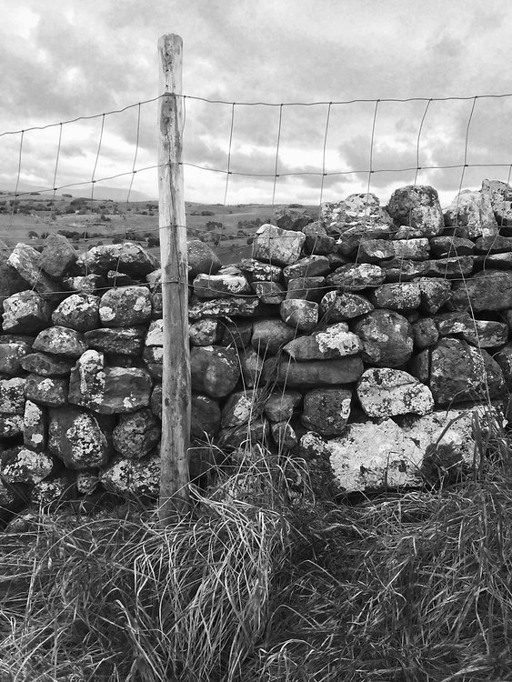 Stone Wall Yorkshire.jpg