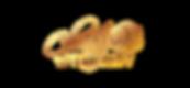 15558-Christy-logo-metalic.png