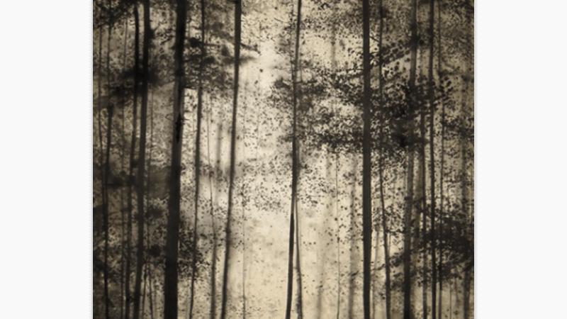 Black Forest Portrait
