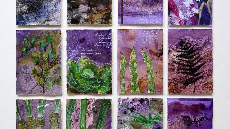 miniatures x 12 - Purple allotment