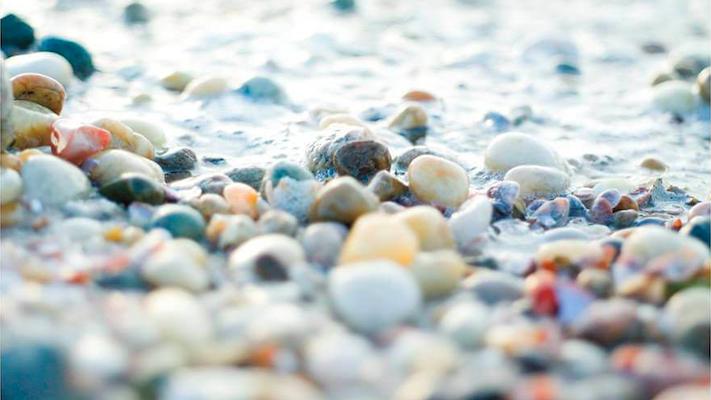 Pebbles & Shells I