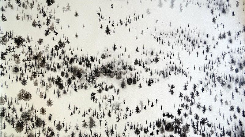 Snowscape bird's view