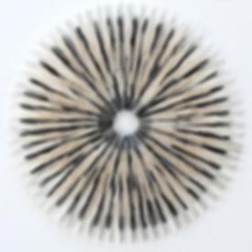 WEBSITE_-_Catlow_medallion_61_x_61cm_Pap